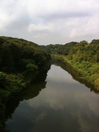花見川 (2)