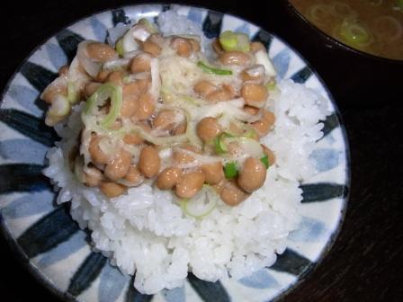 わら納豆 (5)