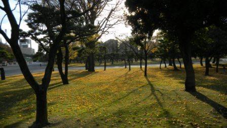 日比谷公園101211 (3)