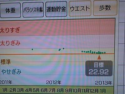 P1000080_20130120224505.jpg