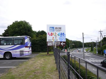 P1120865.jpg