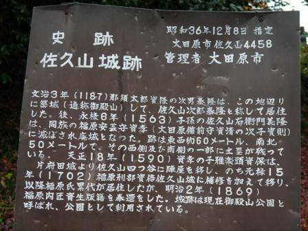 P1150253.jpg