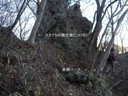 P1160576.jpg