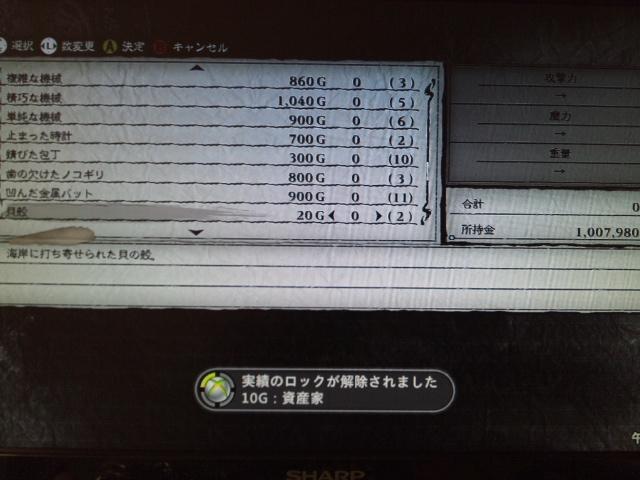 DSC_0157 (2)