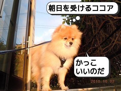 7朝日47