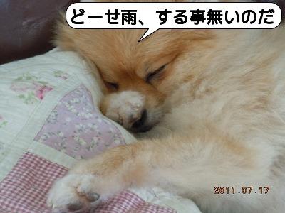 001おやすみ