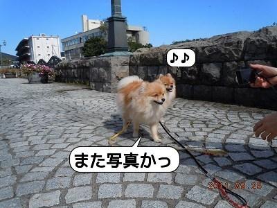 20110925_005.jpg