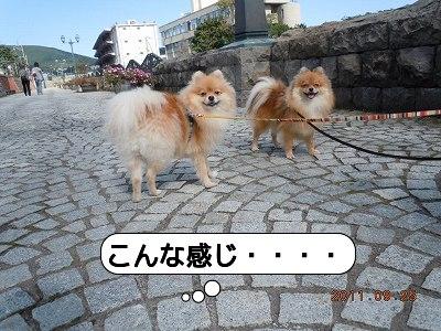 20110925_006.jpg