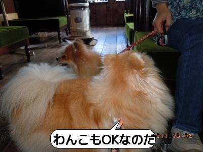 20110925_008.jpg