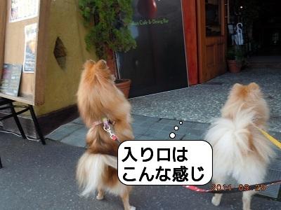 20110925_010.jpg