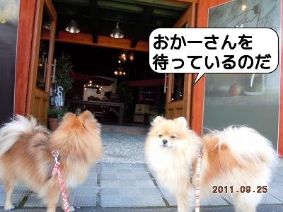 20110925_011.jpg