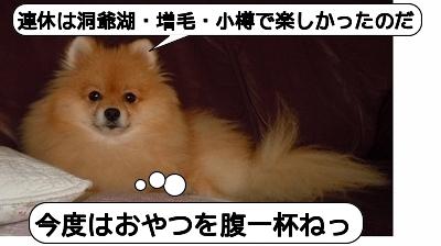 20110925_099.jpg