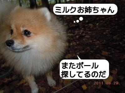 20110929_001.jpg