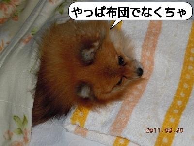 20111001_001.jpg