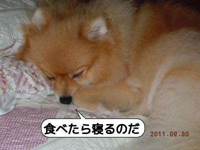 20111001_003.jpg