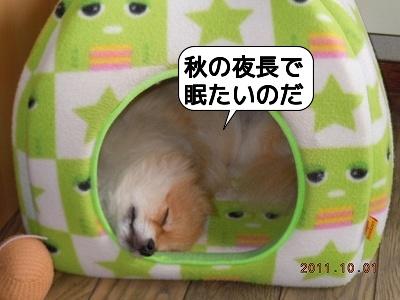 20111001_004.jpg