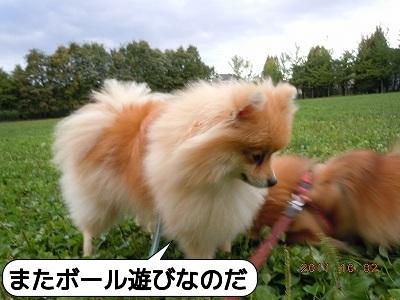 20111002_004.jpg