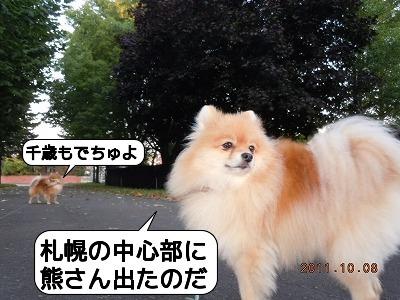 20111008_002.jpg