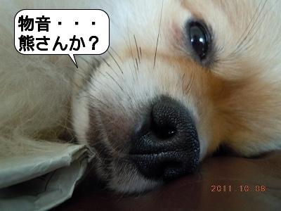 20111008_004.jpg