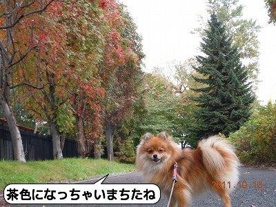 20111016_005.jpg