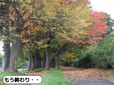 20111016_006.jpg