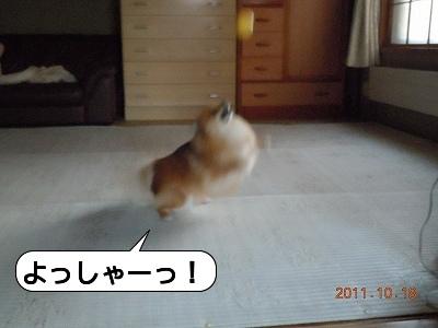 20111018_003.jpg