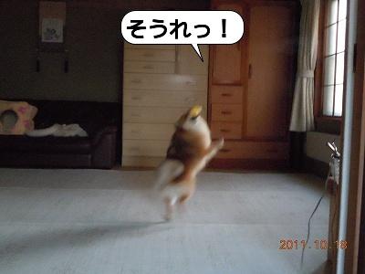20111018_004.jpg