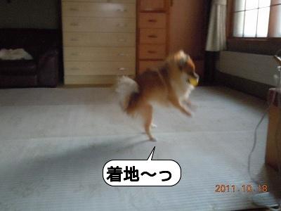 20111018_005.jpg