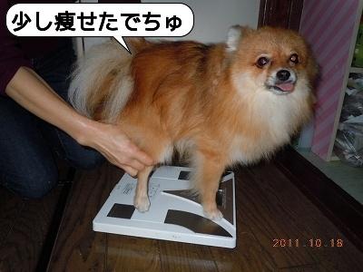 20111018_006.jpg