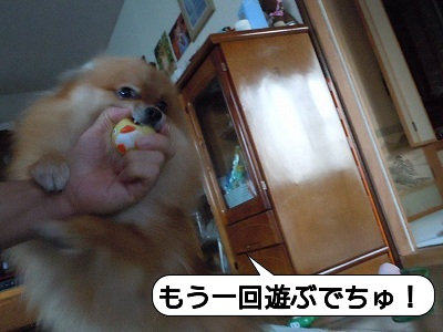20111018_007.jpg
