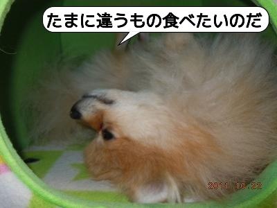 20111023_011.jpg