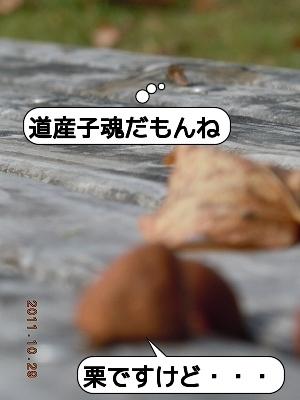 20111030_002.jpg
