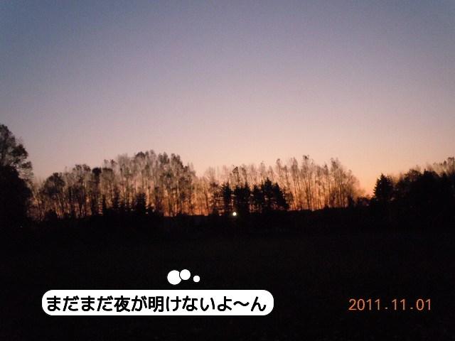 20111101_001.jpg
