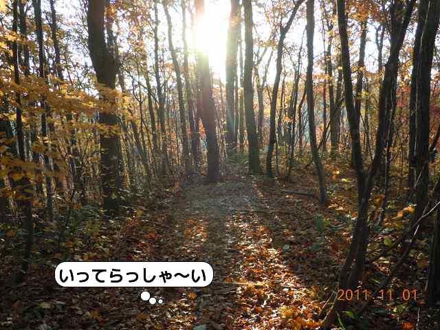 20111101_004.jpg