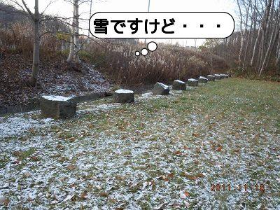 20111116_001.jpg