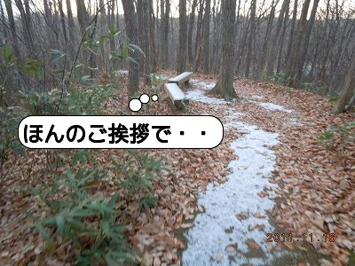 20111116_002.jpg