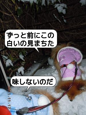 20111117_001.jpg