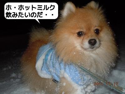 20111117_004.jpg