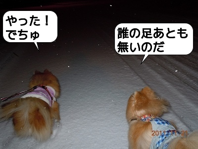 20111121_001.jpg