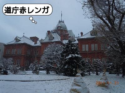 20111121_006.jpg