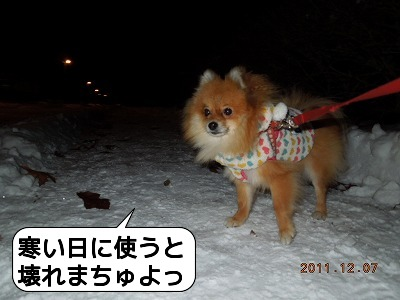 20111207_003.jpg
