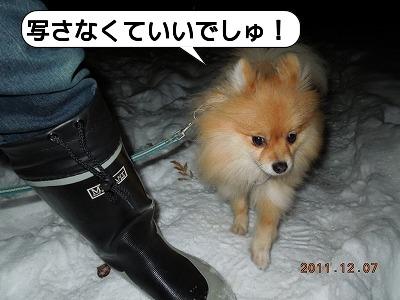 20111207_004.jpg