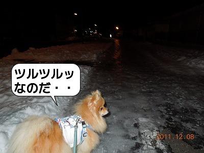 20111208_001.jpg