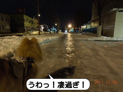 20111208_002.jpg