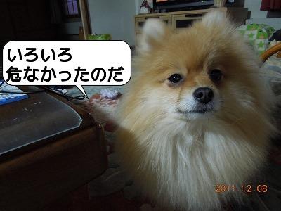 20111208_005.jpg