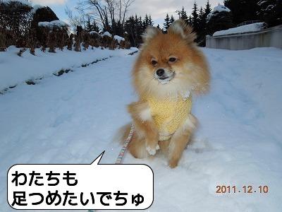 20111210_007.jpg