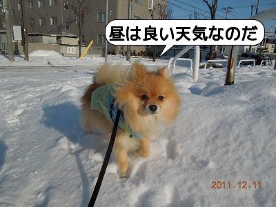 20111211_007.jpg