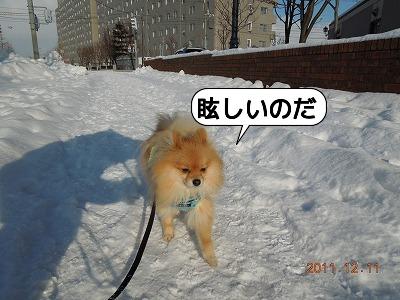 20111211_008.jpg