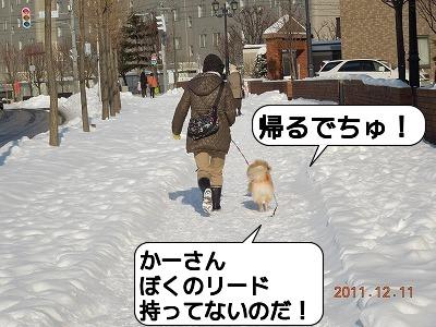 20111211_009.jpg