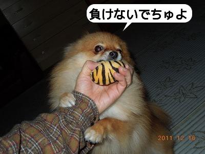 20111216_002.jpg